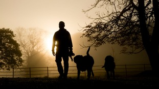 Dog walkers are being urged not to push their pets too hard.