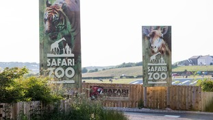 South Lakes Wild Animal Park in Dalton-in-Furness, Cumbria