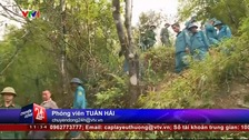 Search teams pictured on Vietnamese television.