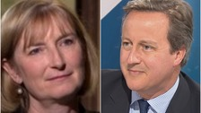 David Cameron has denied allegations that Sarah Wollaston was pressured into joining the Remain campaign