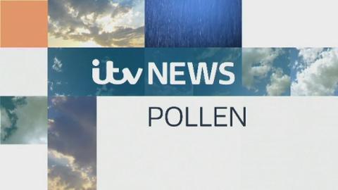 Prog_Pollen_South_FRI_10TH