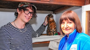 Justin Hawkins said losing his cat was
