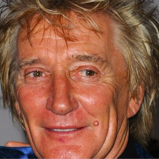 Rod Stewart was knighted in the Queen's birthday honours