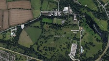 Dog walker urged to come forward after dog attacks another in Markeaton park