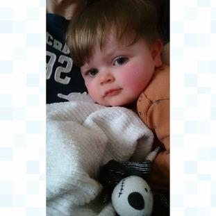 Harley and his Jack Blanket
