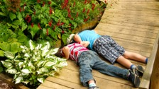 Children can explore the garden nature trail to find birds, butterflies and insects