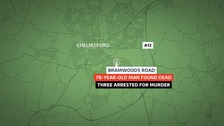 Bramwoods