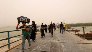 displaced in Falluja