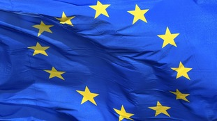 The flag of the European Union.