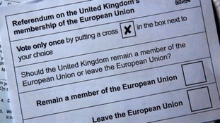 The EU Referendum poll card.