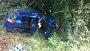 Man injured after car hits tree