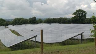 Solar farm near Wellington