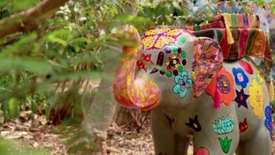 Baby elephants decorated for children's charity in Sheffield