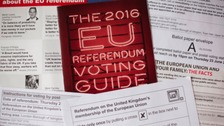 EU Referendum voting guide