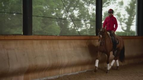 P-CHINESE_EQUESTRIAN