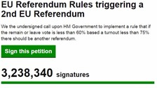 Fraud probe into second EU referendum petition