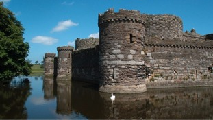 Beaumaris Castle and moat with swan in the water