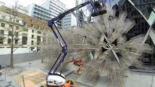 Time-lapse video shows Ai Weiwei's art being taken down.