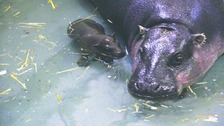 Georgia enjoys a dip with her mum Flora
