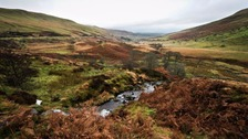 Search for 20 missing children lost on Brecon Beacons