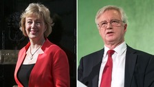 Andrea Leadsom and David Davis