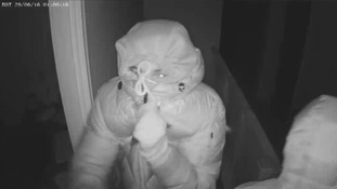 Watch the moment burglars are frightened away by alarm in Cambridgeshire