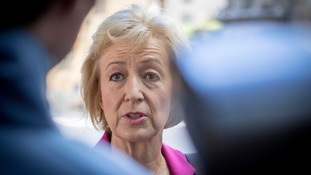 Ms Leadsom has emerged as a top pro-Brexit contender for the leadership