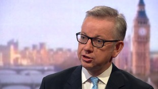 Michael Gove had been expected to back fellow Leave campaigner Boris Johnson