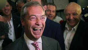 Who are the leading candidates to be the next Ukip leader?