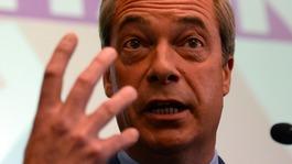 UKIP leader quits