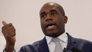 Labour MP David Lammy subjected to 'barrage' of racist abuse