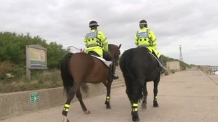 Essex police horses on patrol