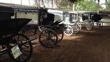 Horse-drawn hearses await sale in Kent