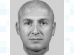 Efit of the suspect