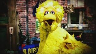 Sesame Street's 'Big Bird' featured in Obama election advert