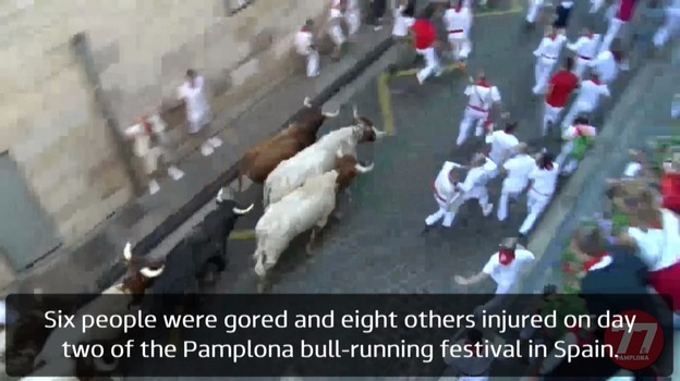 pamplona_bulls_web08