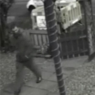 Police are looking for this man