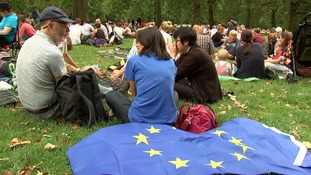 Londoners hold 'protest' picnic against Brexit.
