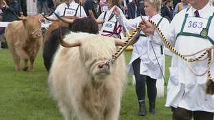 The Great Yorkshire Show starts tomorrow