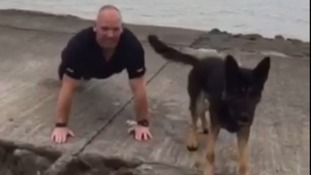 police dog takes part in push up challenge
