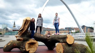 Gateshead Quayside features new natural oak play area