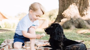 New pictures of Prince George released on third birthday
