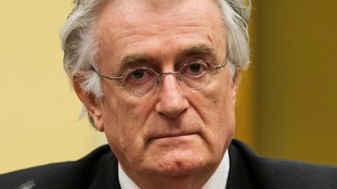 Radovan Karadzic appears in the courtroom for his appeal.