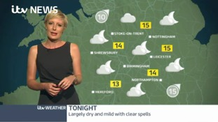 Midlands Weather: Largely dry and mild