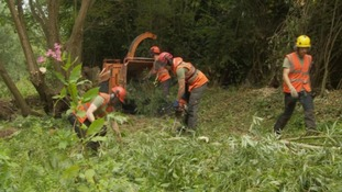 Clearance project at River Petteril to reduce flood risk