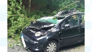 Three people are said to be lucky to be alive after a huge tree branch ploughed through the windscreen of their car.