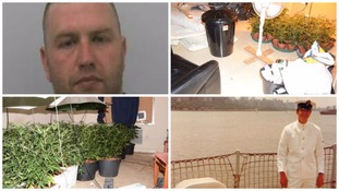 Man moved neighbour's body to set up cannabis factory