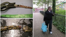 Woman beheaded pet snakes after drinking