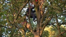 Liam Byrne being rescued from the tree after his first parachute jump