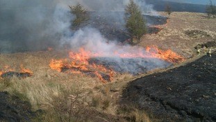 Grass fires warning after dry spell
